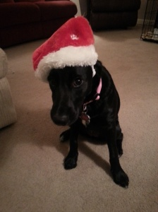 Macie Hat #1
