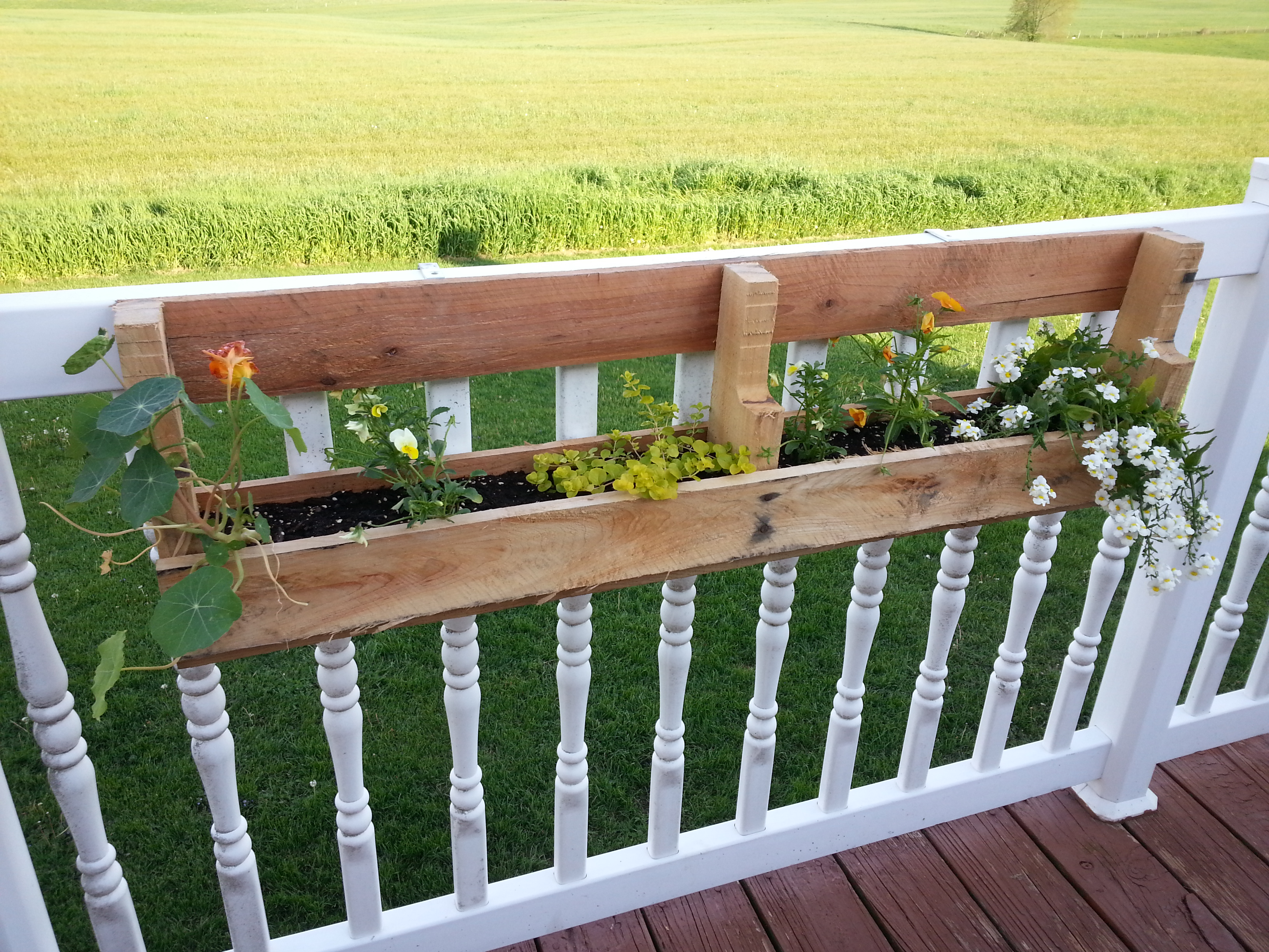 Diy pallet flower boxes simplify the chaos - Flower boxes for railings ...